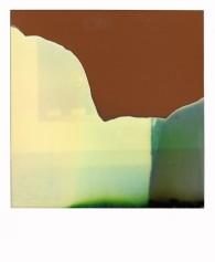 polaroid-4